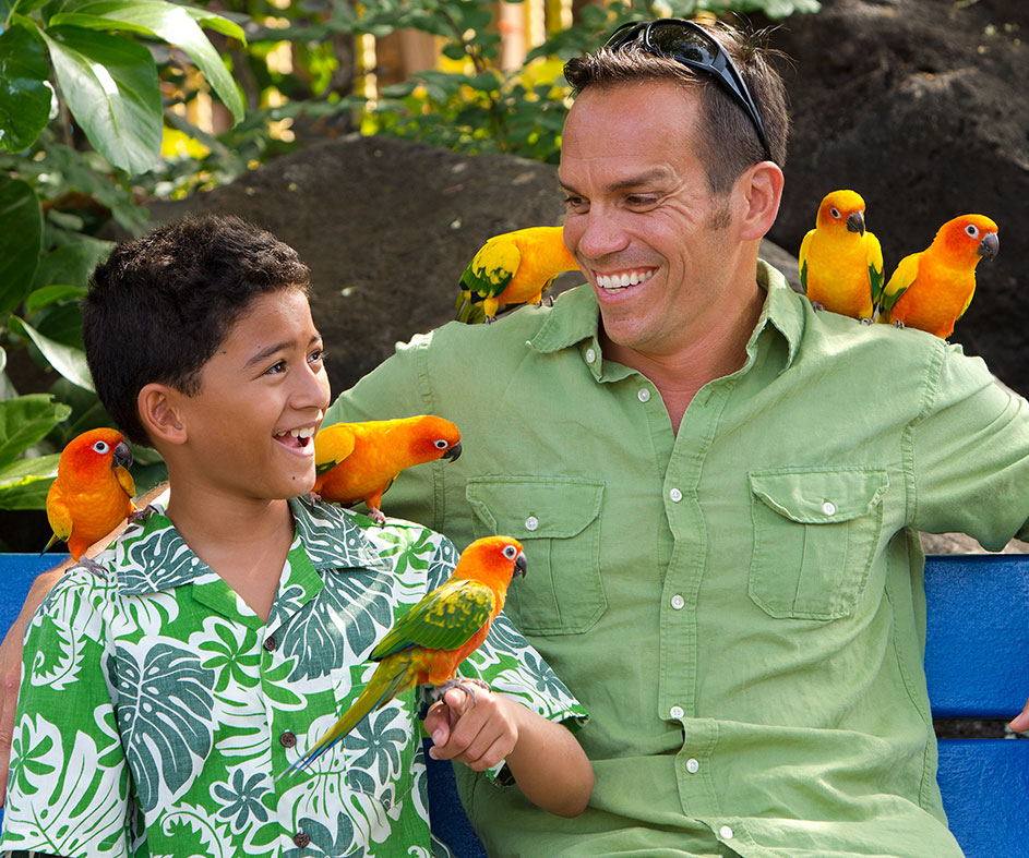Man and boy with exotic birds on their arms