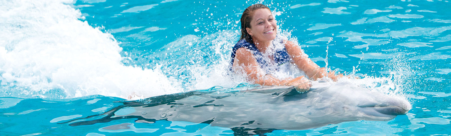 girl getting belly ride from dolphin