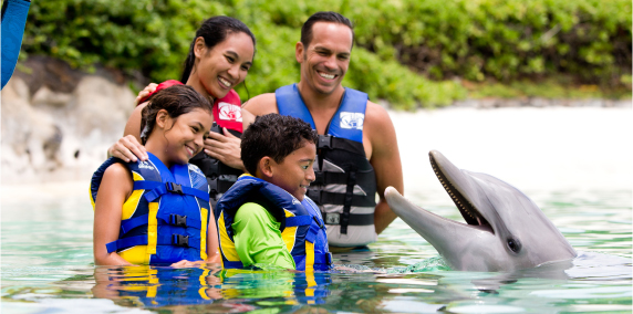 Family in water with dolphin at sea life park