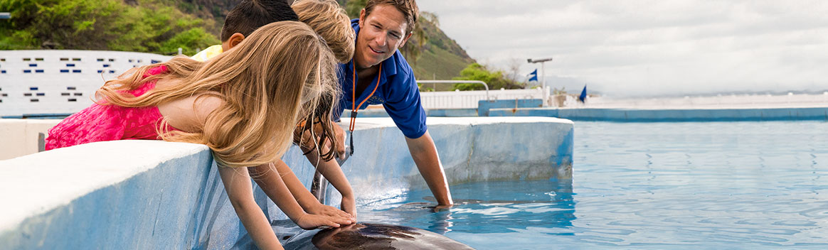 Group of kids petting dolphin in dry encounter