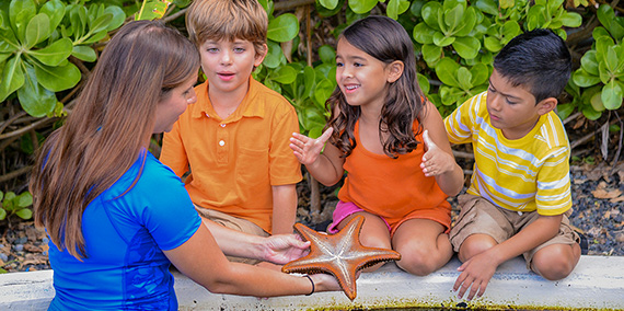 Volunteer showing starfish to group of children
